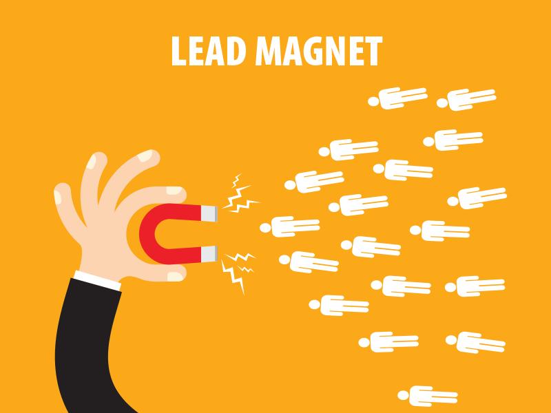 Как увеличить продажи в интернет-магазине с помощью лид-магнита